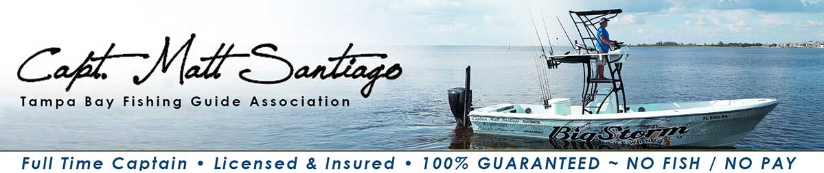 Tampa Bay Fishing Guide Association - Capt. Matt Santiago