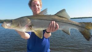 Big snook 3 Tampa Bay Fishing Charter Capt. Matt Santiago