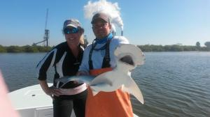 Bonnethead Shark Tampa Bay Fishing Charter Capt. Matt Santiago