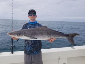 Cobia Tampa Bay Fishing Charter Capt. Matt Santiago