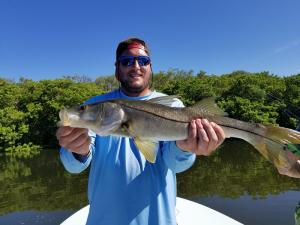 Snook 14 Tampa Bay Fishing Charter Capt. Matt Santiago
